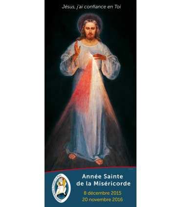 Kakémono Année Sainte de la Miséricorde - Jésus Miséricordieux de Ste Faustine Jubilé (KM15-0023)