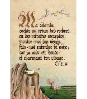 Enluminures - Ma colombe, cachée au creux des rochers, ...