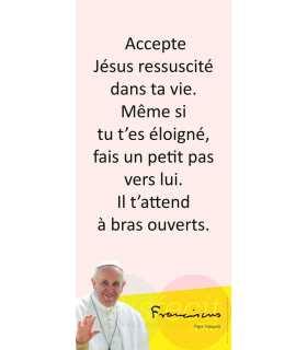Kakémono Pape François (citation : Accepte Jésus ressuscité) (KM14-0024)