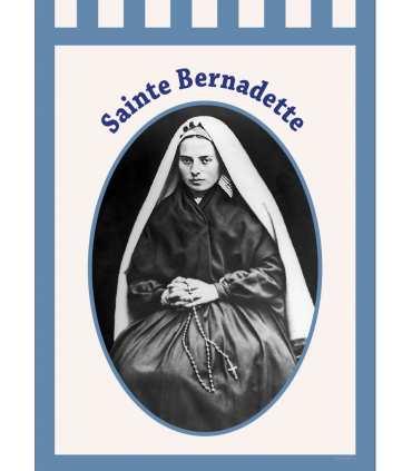 Bannière Sainte Bernadette
